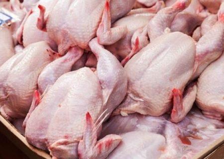 سرانه مصرف روزانه گوشت مرغ در بندر لنگه بین ۸ تا ۱۰ تن است