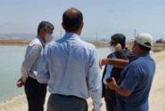 بازدید فرماندار بندرلنگه از پروژه پرورش میگو سایت تدارک جنوب کیش